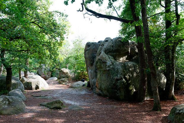 Alguno de los tantos senderos en el Bosque Fontainebleau